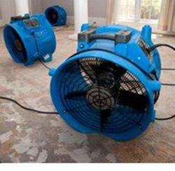 Hardwood Water Damage Repair at Abbey Van Dam Carpet and More in Marrysville